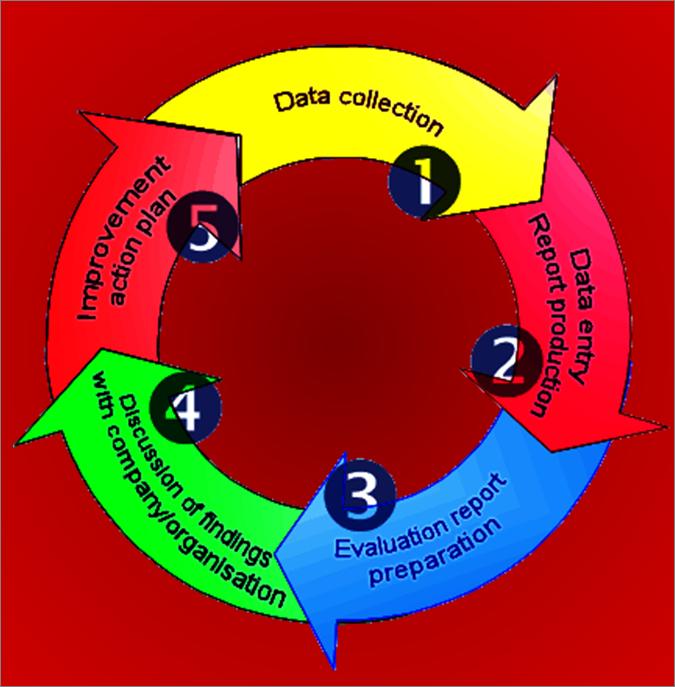 Cómo mejorar los procesos